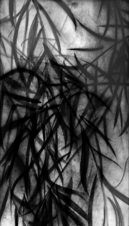 """Black Willow 2"" 2009 Edition of 7 (archival pigment print, 34 x 22"")"