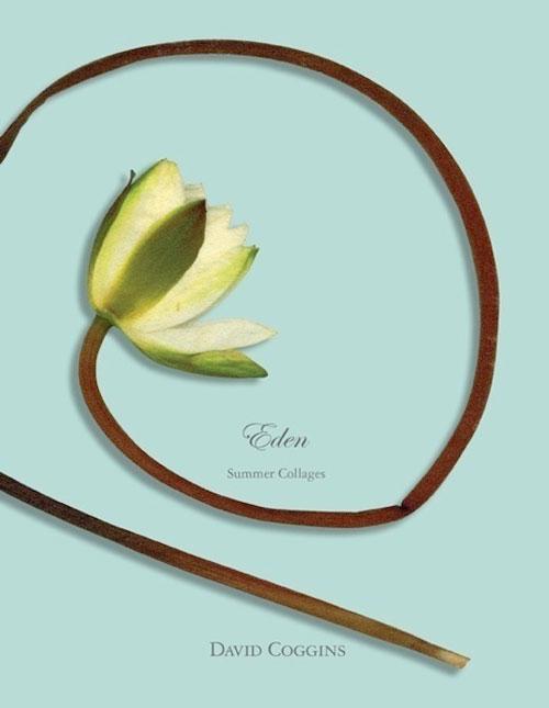<em>Eden Summer Collages</em>