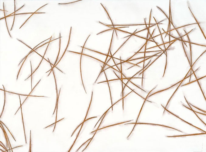 """Pine Needles"" 2004 (watercolor, colored pencil, and graphite on paper, 22 x 30"")"